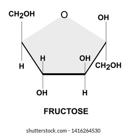 Structural chemical formula and model of fructose