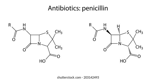 Structural chemical formulas of antibiotic penicillin -lactam group, 2d illustration, isolated on white background, vector, eps 8