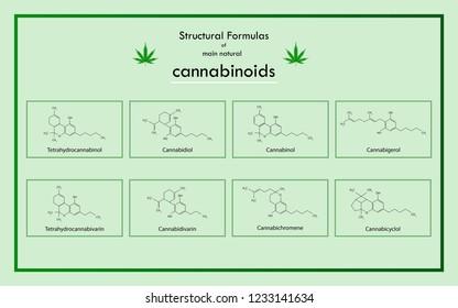 Structural Formulas of main natural cannabinoids complete, Tetrahydrocannabinol, Cannabidiol, Cannabinol, Cannabigerol