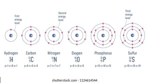 Simplest Atomic Model Beryllium Phosphorus Fluorine Stock Vector