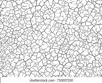 structure of the cracked earth a vector a background