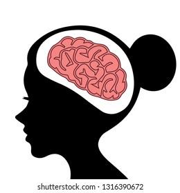 Structure of woman human brain anatomy vector illustration.Cross section human brain. Circadian rhythm and biological clock for control human brain.