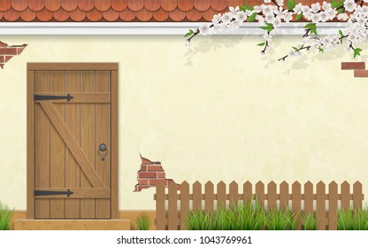 Stucco wall of a house with an old wooden door. Blooming branch of a tree and grass in a front garden. Spring rural illustration.