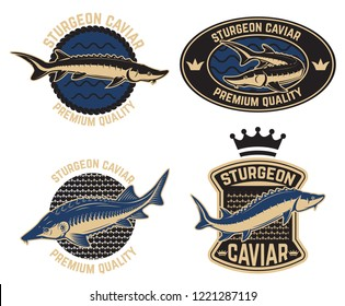 Sturgeon caviar label template. Design element for logo, label, emblem, sign, poster. Vector illustration
