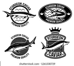 Sturgeon caviar label template. Design element for logo, label, emblem, sign, poster. Vector illustration