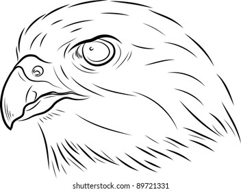 The Stylised Head Of A Hawk