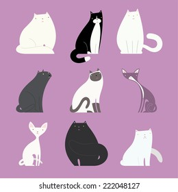 Stylish cat set, with different kittens like: white fat cat, black and white normal weight cat, white cat, grey cat, white and grey cat, white thin cat, black fat cat vector illustration.
