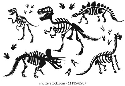 Stylish silhouette dinosaur skeletons,dinosaur bones. Triceratops, Tyrannosaurus, Brahiosaurus, Velociraptor, Stegosaurus, Parasaurolophus. Modern vector flat design image isolated on white background