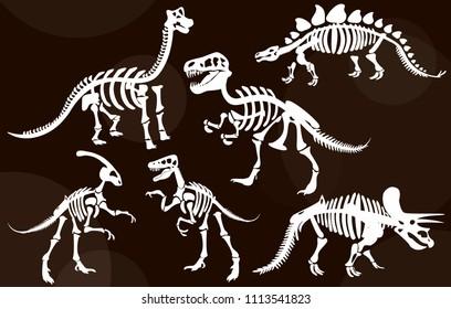 Stylish, steep, dinosaur skeletons, dinosaur bones. Triceratops, Tyrannosaurus, Brahiosaurus, Velociraptor, Stegosaurus, Parasaurolophus. Modern vector flat design image isolated on brown background