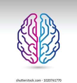 A stylish vector icon of a human brain from a top down view.