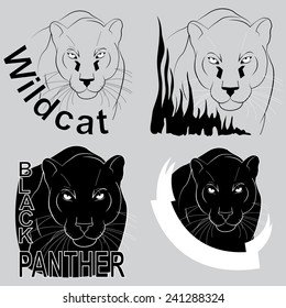 stylish vector logo black panther