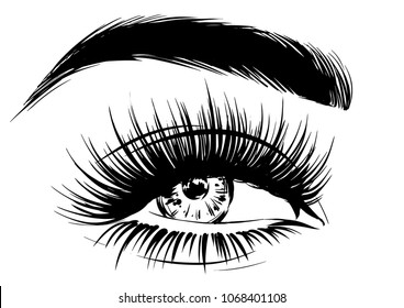 stylish woman with makeup lashes