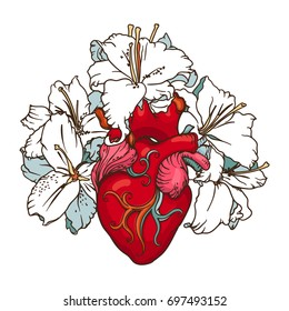 Stylized anatomical Human Heart drawing. Heart with white lilies in romantic style isolated on white. Tattoo design, card template, Blooming Heart concept.
