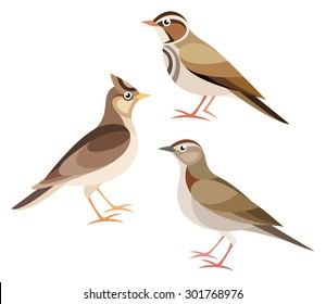Stylized Birds - Lark, Skylark, Woodlark