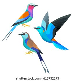 Stylized Birds - Lilac-breasted, European and Racquet-tailed Roller