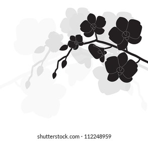 stylized black orchid on a white background