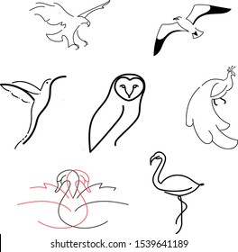 stylized black silhouettes of birds: owl, flamingo, swans, eagle, seagull,  peacock, colibri