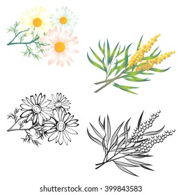 Stylized chamomile and sea back thorn