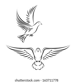 stylized dove in flight. Side and front view - black outlines. Vector illustration