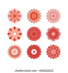 Stylized field or garden flowers, floral design elements. Colored icons set of 9 elements isolated on white background. Vector illustration