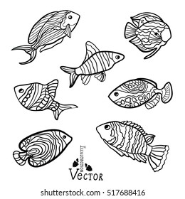 Royalty Free Fish Drawing Images Stock Photos Vectors Shutterstock