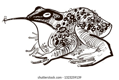 stylized frog, linear illustration white background, Princess Frog