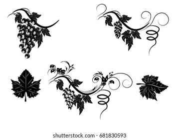 the stylized grapevine with leaves and clusters of grapes, a pattern