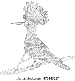 Stylized hoopoe bird (Upupa epops) sitting on tree branch, isolated on white background. Freehand sketch for adult anti stress coloring book page with doodle and zentangle elements.