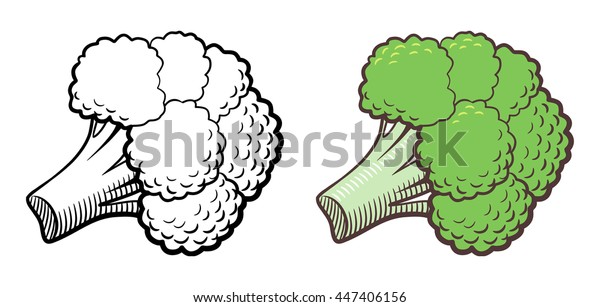 stylized illustration broccoli vector isolated on stock vector royalty free 447406156 https www shutterstock com image vector stylized illustration broccoli vector isolated on 447406156