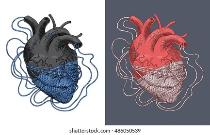 Stylized illustration of heart tangled in threads. Vector
