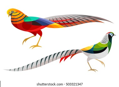 Stylized Pheasants - Golden Pheasant and Lady Amherst's Pheasant
