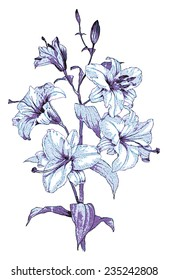 Stylized sketch with flowers for your design