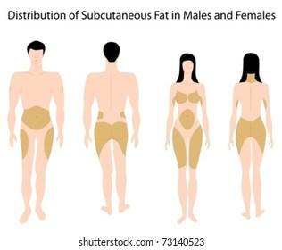 Weight loss by khurram mushir