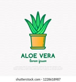Succulent Aloe vera in pot. Thin line icon. Modern vector illustration of houseplant.