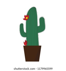 Succulent cactus flower vector illustration, Cartoon isolated on white background