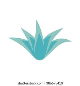 Succulent flower isolated on white background. Plant icon. Bush. Vector illustration.