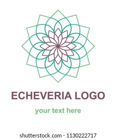 Succulent plant logotype template. Flat floral logo concept for a flower shop. Vector design element isolated on white background.