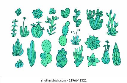 Succulent plants collection - seamless vector border ornament