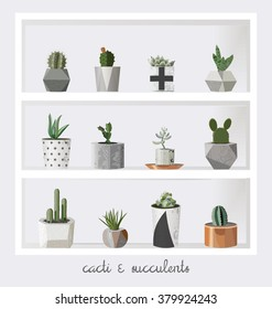Succulent plants growing in cute pot. Scandinavian style. Hand drawn textures. For your design, mood boards and posters. Gray background. Stock vector.