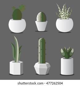 Succulent plants growing pot. Scandinavian style. Gray background. Stock vector.