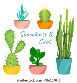 Succulents and cacti vector set on white background. Home interior floral design elements. Green house pot plants, flowers and nature concept. Tropical exotic botany collection.