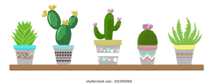 Succulents and cactus plants in pots. Houseplants in colorful pots on shelf decoration set. Interior gardening decor., cartoon style, vector illustration