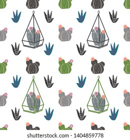 succulents, cactuses and other plants growing in florariums