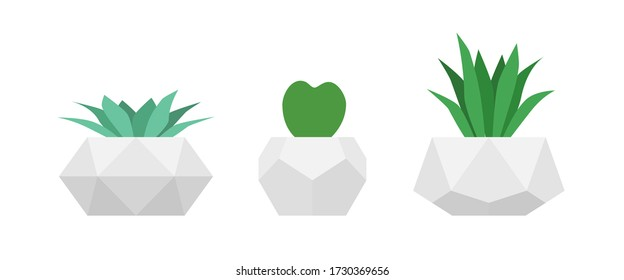 Succulents in geometric concrete pots. Vector set of home flowers. Minimalistic design