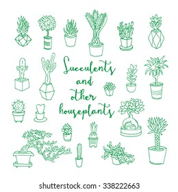 Succulents and other houseplants. Doodle set. Isolated