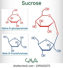 Sucrose sugar molecule. Structural chemical formula and molecule model. Vector illustration