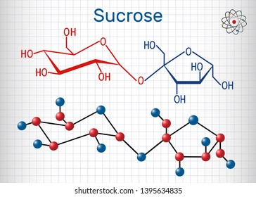 Sucrose sugar molecule. Structural chemical formula and molecule model. Sheet of paper in a cage. Vector illustration