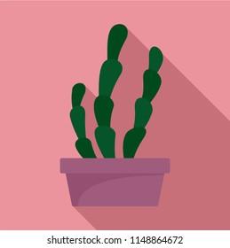 Suculent cactus pot icon. Flat illustration of suculent cactus pot vector icon for web design
