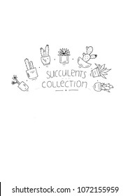 Sucullents doodle collection