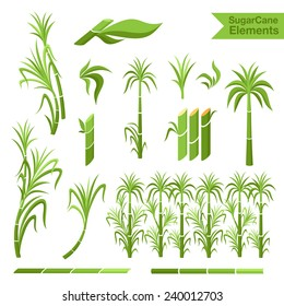 Sugar cane decoration borders, steams and leaves. Collection of elements for design.